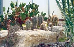 hp-garden-attraction3
