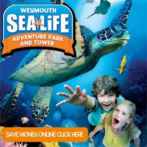 Sea Life Square