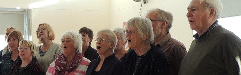 choir-narrow-strip