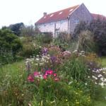 Garden-View-of-House-1